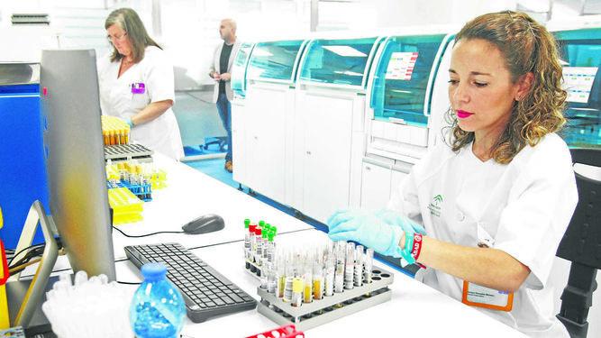 Tecnicos-laboratorio-procesan-muestras-biologicas_1261984429_86885245_667x375